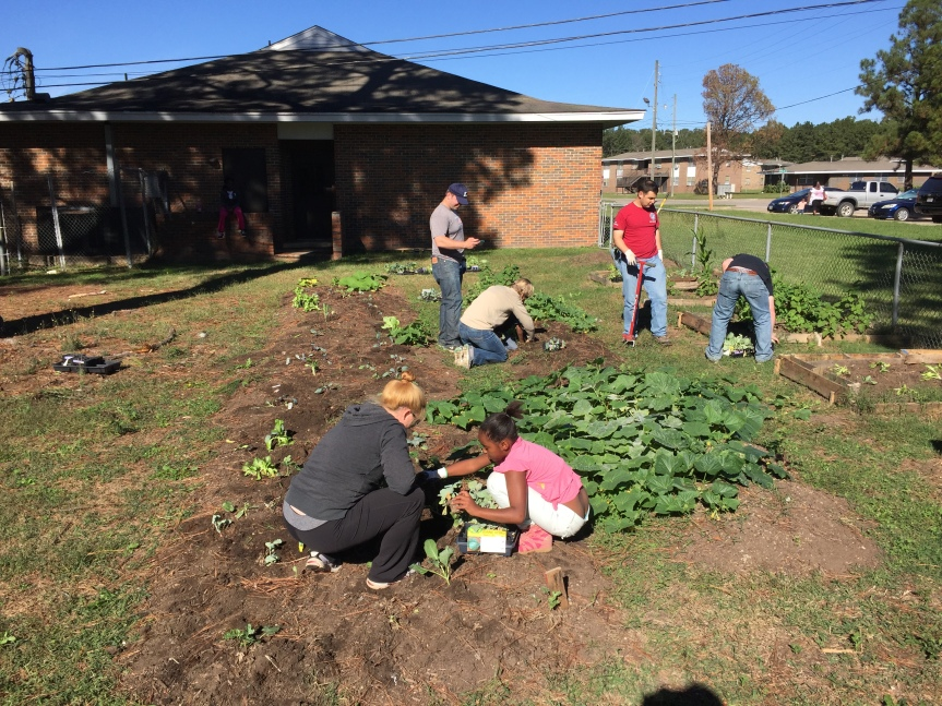 How to Start a Community Garden in 5 Steps that Sound More Complicated Than TheyAre